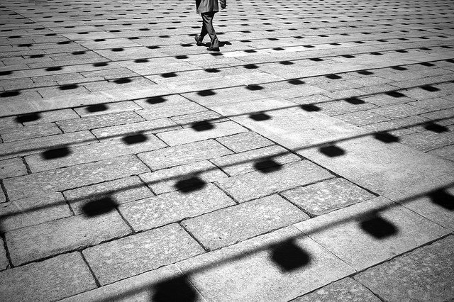 优秀摄影作品 Tappeto urbano