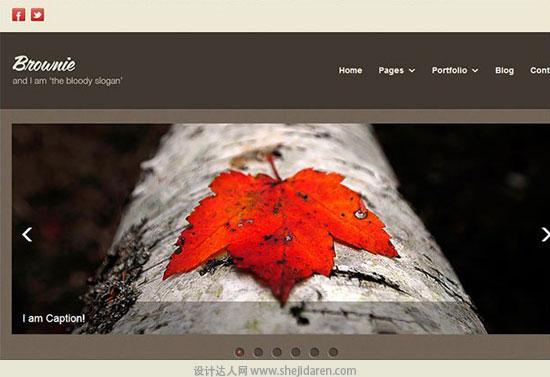 免费网站模板下载brownie-6