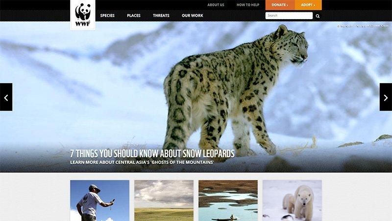 WWF Endangered Species