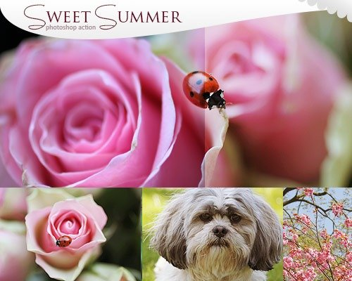 sweet summer thumb1 那些让照片更美丽的Photoshop Action脚本