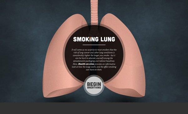 Health-On-Line扁平化网页设计