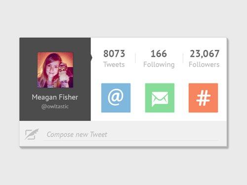 Twitter Widget User Interface 设计素材下载