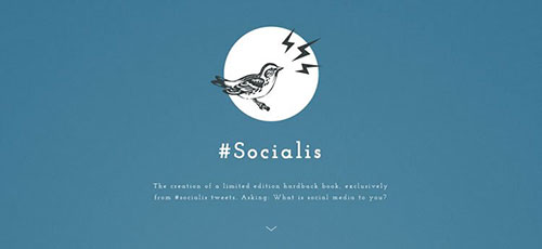 Socialis - 简约网页设计