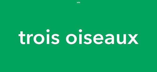 Trois Oiseaux - 时尚 简约网页设计