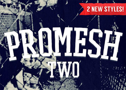 prmesh-two 字体下载