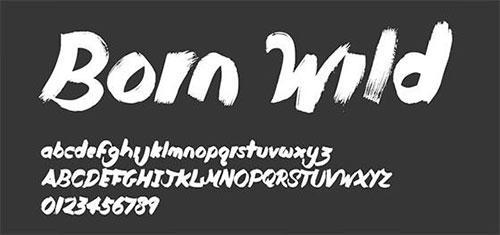 设计师不要错过,免费优质英文字体整理