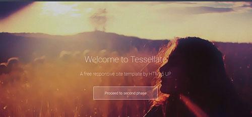 Tessellate 自适应HTML网站模板