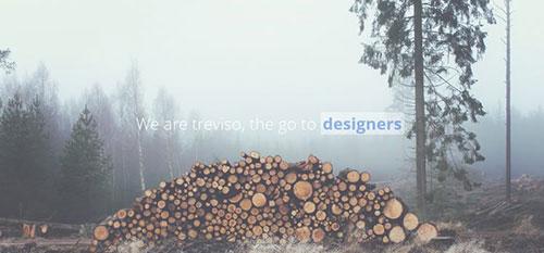 Treviso 响应式 html CSS 网站模板