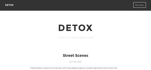 Detox 响应式 html CSS 网站模板