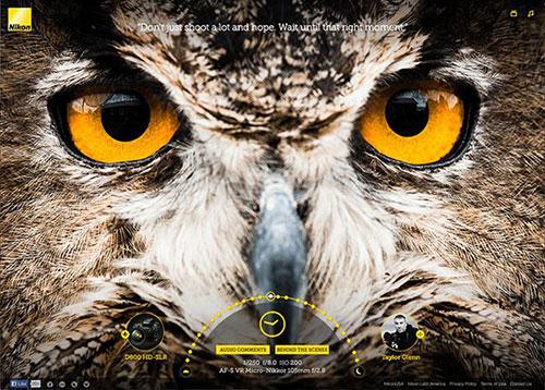 Nikon Image Quality Experience #CSS3 #网页设计