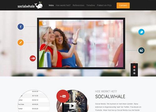 Socialwhale #CSS3 #网页设计