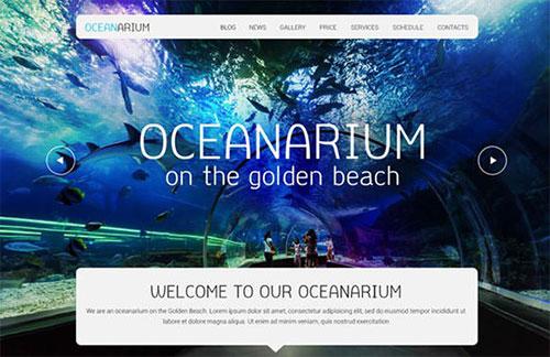 oceanarium_template psd 网站模板