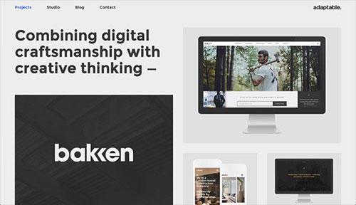 adaptable 网页设计欣赏