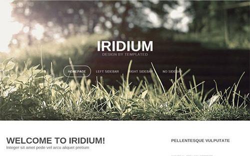 iridium 网页模板