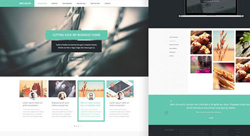 infusion-free-website-templates-1 网页模板