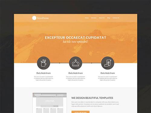 psd-template 网站模板