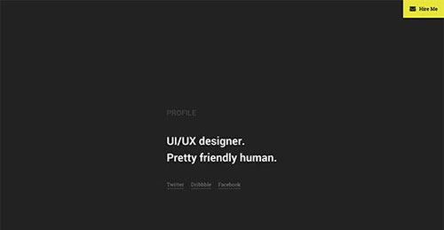 profile-wide 网站模板