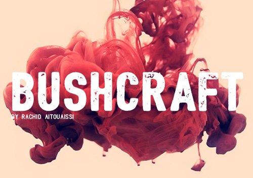 Bushcraft free 字体下载