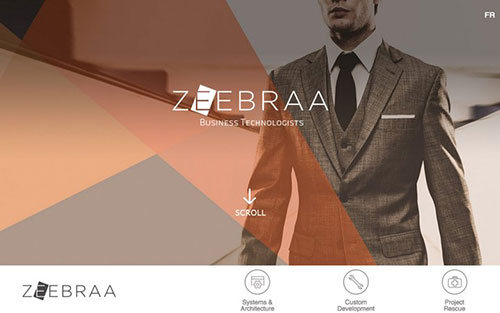 Zeebraa 优秀网页设计欣赏