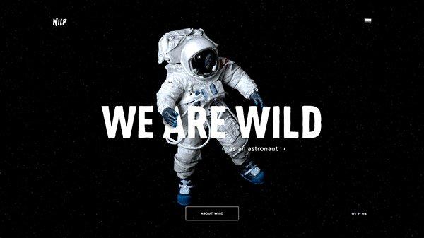 网页设计欣赏:WILD