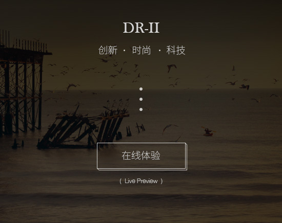 dr-ii-description-03