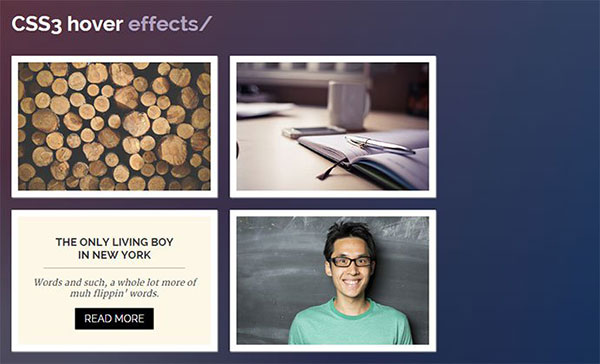 css3-hover-effects-2
