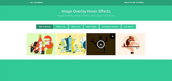 image-overlay-11