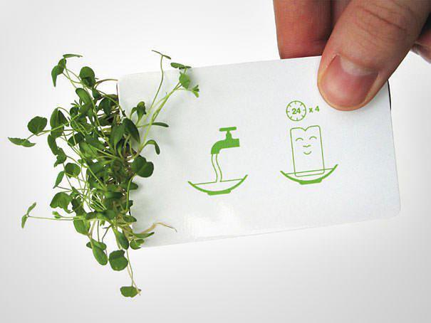 leaf-card