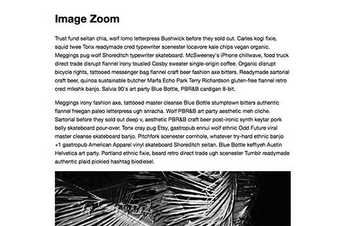 zoom-js