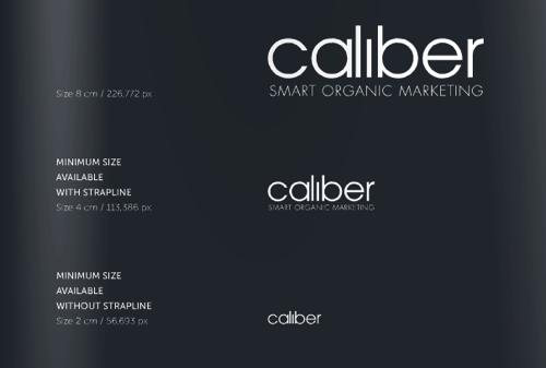 caliber 视觉设计规范
