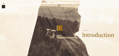 《网页设计灵感:图像遮罩、混合模式、交错排版》