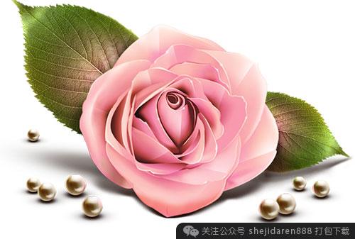 qing-ren-jie-sucai-xianhua-12