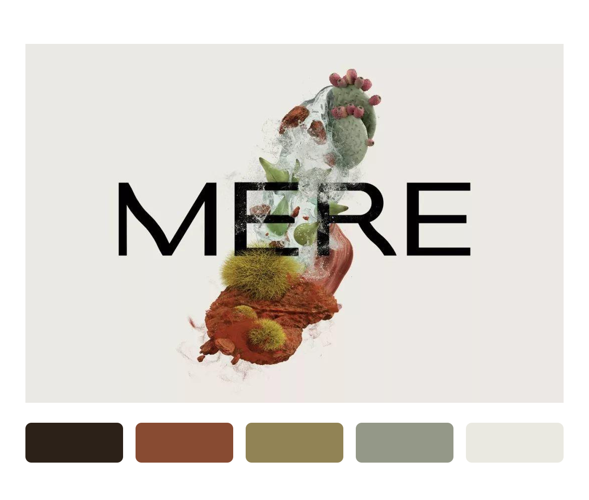 Mere Skincare化妆品品牌设计,自然抽象高端