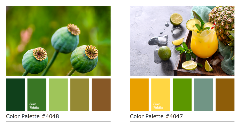 老牌精美图像配色网站