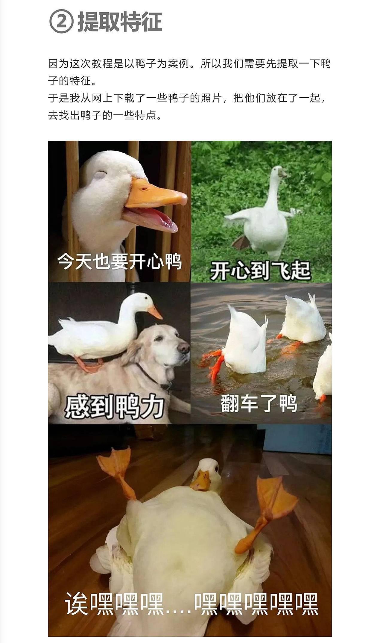 用三个几何图形画出5000只鸭子 - 插画教程