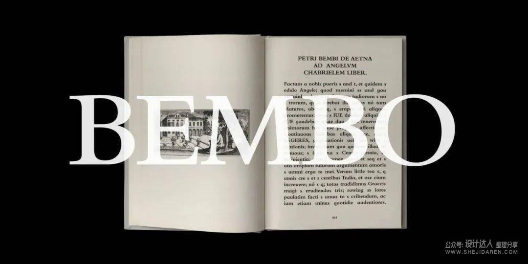 重要基础知识:拉丁字母字体样式指南