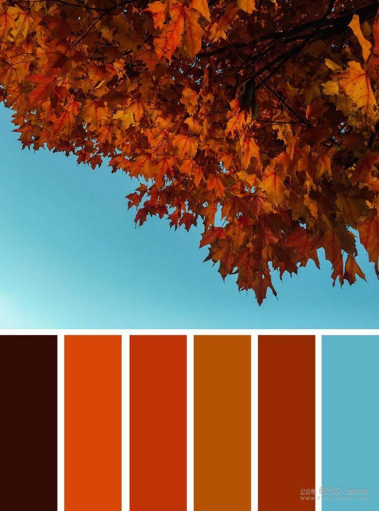 这些色彩协调性!只有20%的设计师知道