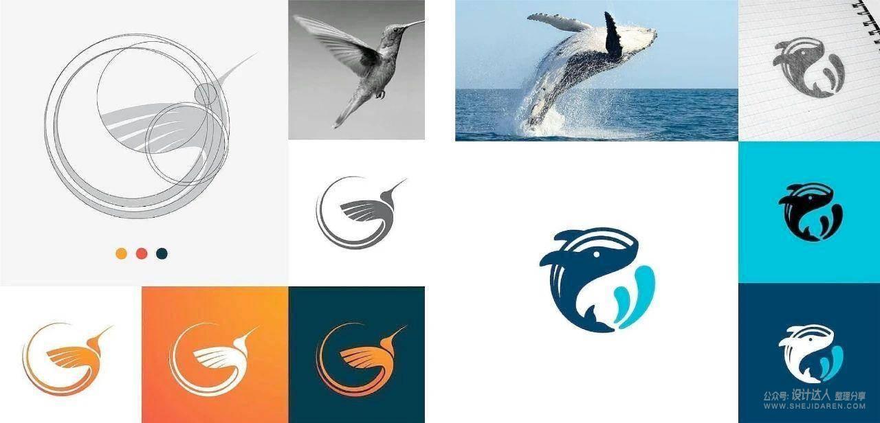 动物标志设计教程:利用照片绘制出高逼格LOGO