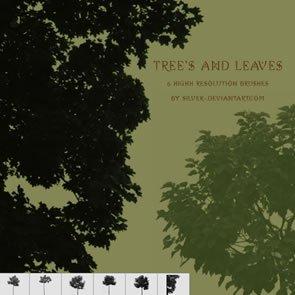 Tree's & Leaves 6 Brushes