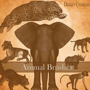 Animals 7 Brushes