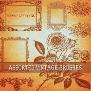 Assorted Vintage Bruses 18 Brushes