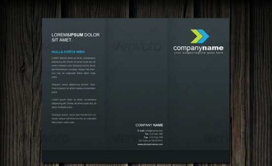 Professional Tri-Fold Brochure 2