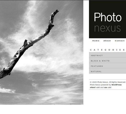 Photo Nexus WordPress gallery 2 in 1