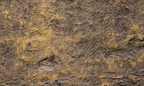 Old Plaster Stucco Texture 01