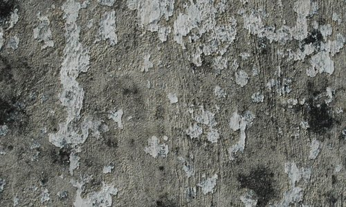 Old Stucco texture