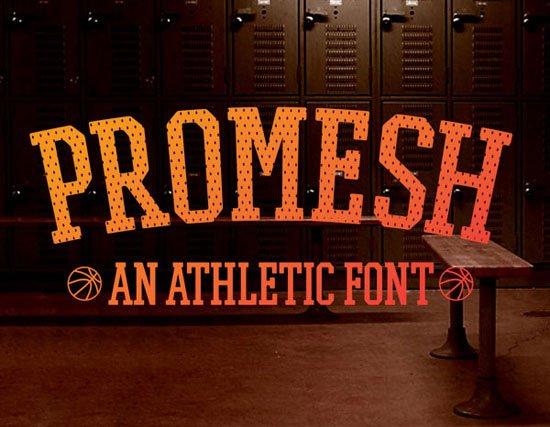 PROMESH 免费字体下载 - 设计达人网