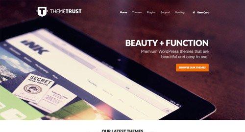 网页设计欣赏Theme Trust